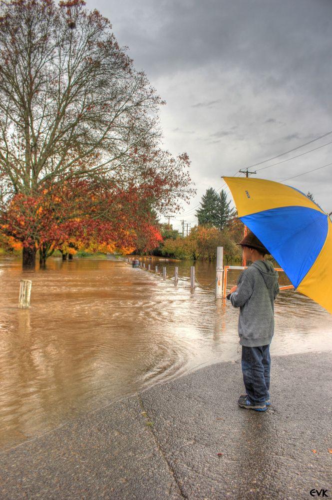 Photo in Random #park #fall #colorful #umbrella #flood #langley