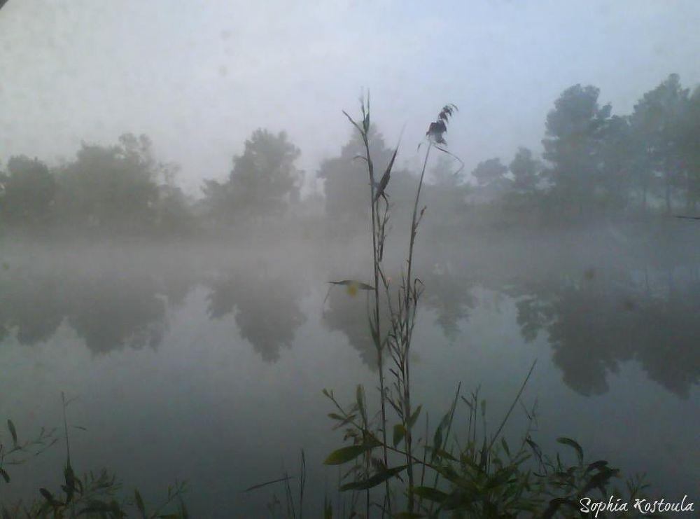 Photo in Random #greece #kaiafa's lake #zaharo #sw peloponisos