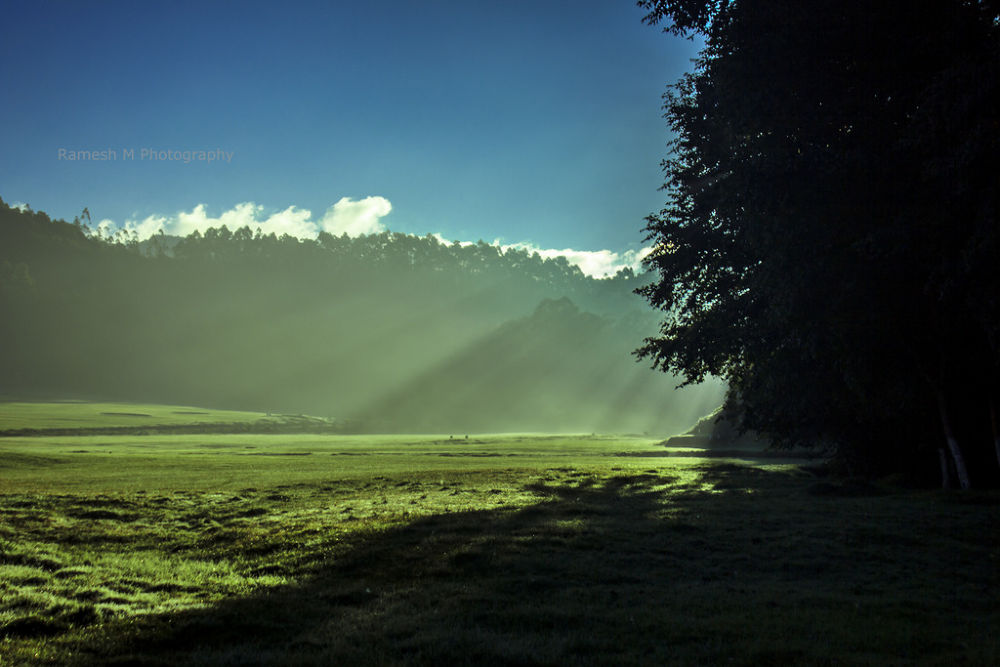 Photo in Nature #nature #kerala #munnar #indian photography #ramesh m photography #indian nature photography #indian landscape photography #munnar kerala #theni #theni to munnar trekking #rameshm #lansacape