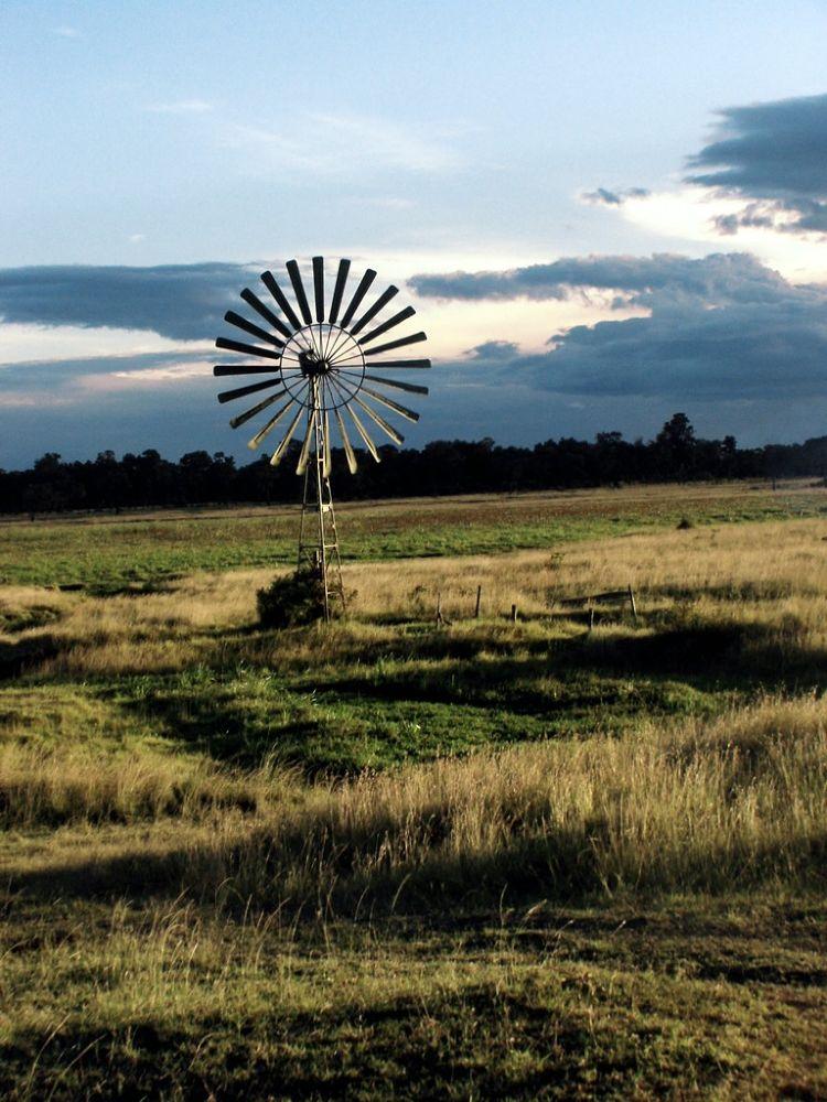 Photo in Random #wind #bush #kenya