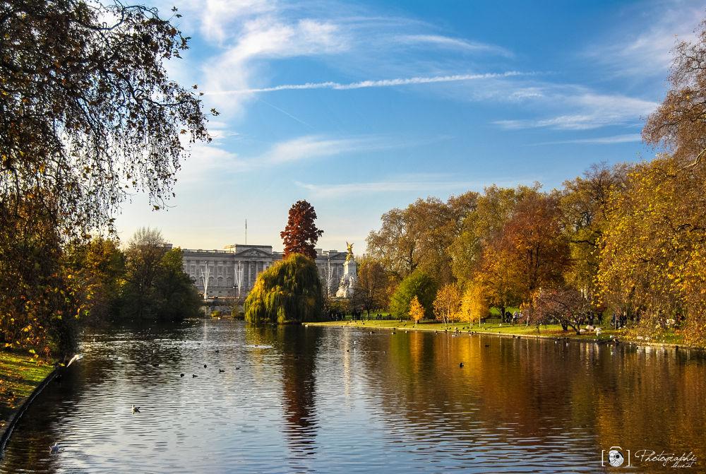 Photo in Landscape #london #autumn #londra #autunno #photographic lecce #buckingham
