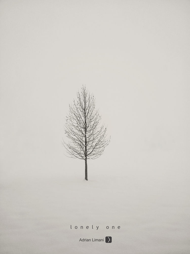 Photo in Nature #cold #winter #snow #alone #nature #lonely #tree