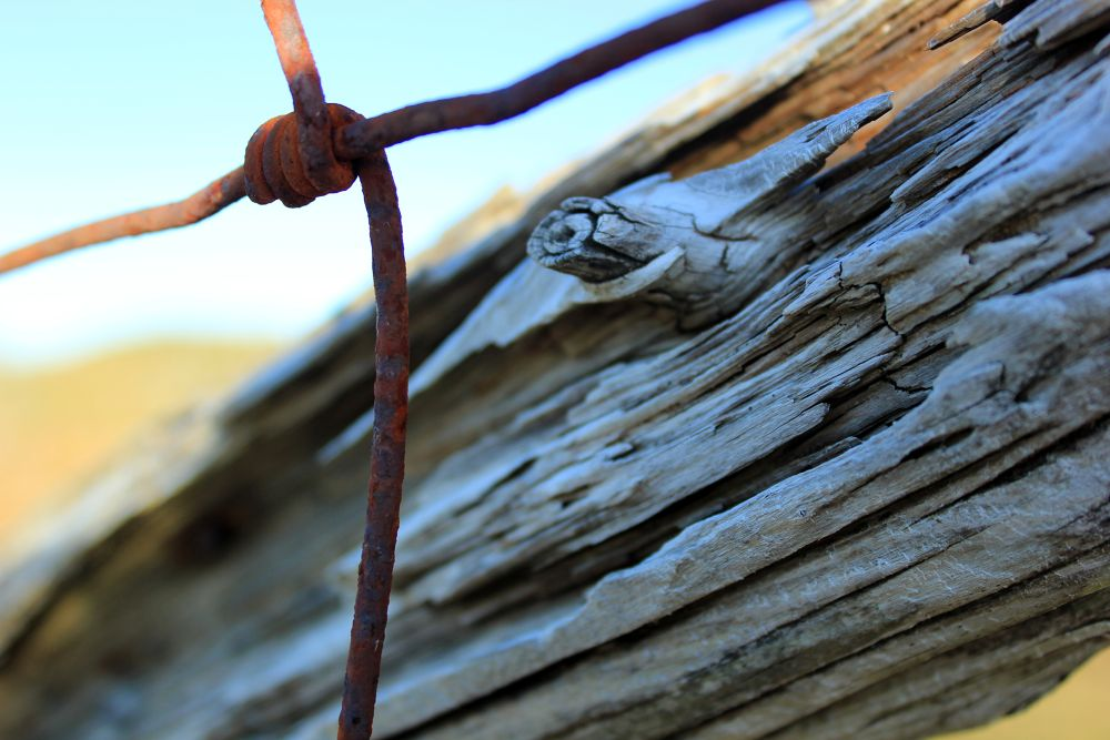 Photo in Random #fence wire wood