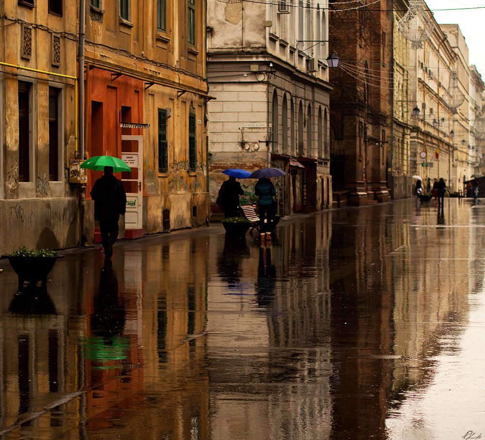 Photo in Street Photography #street photography #reflection              water