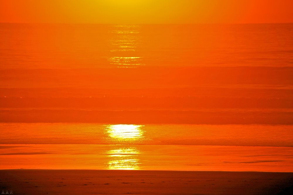 Photo in Random #beach #sky #sea #sunset #sun #orange