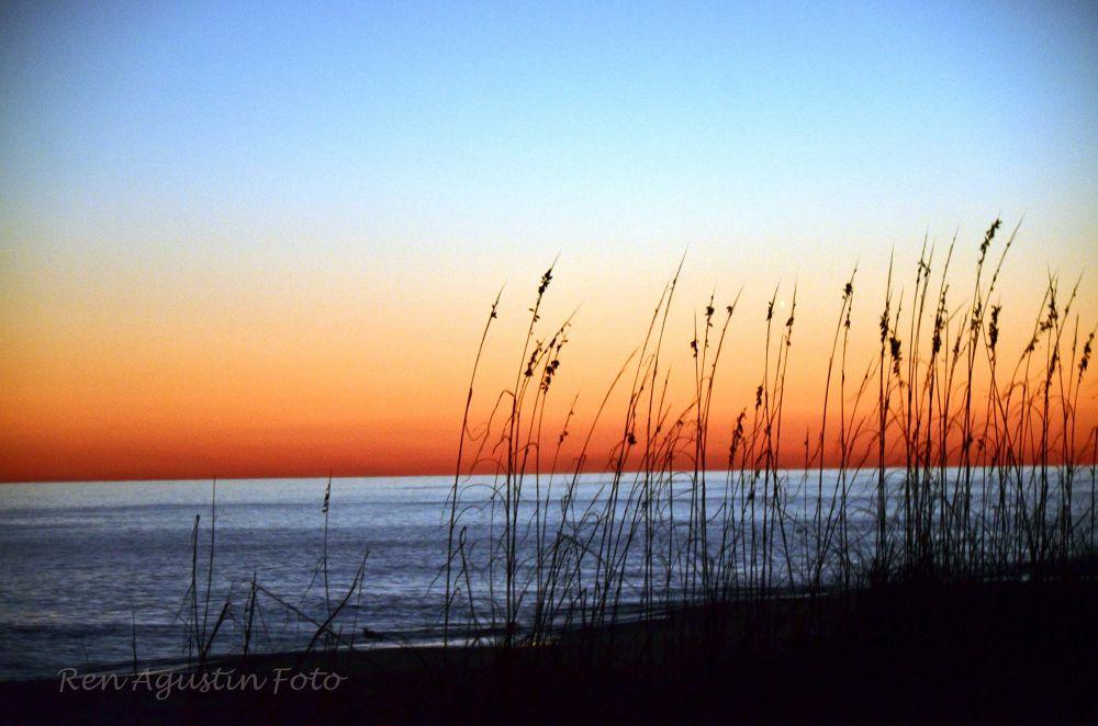 Photo in Random #beach #water #dusk