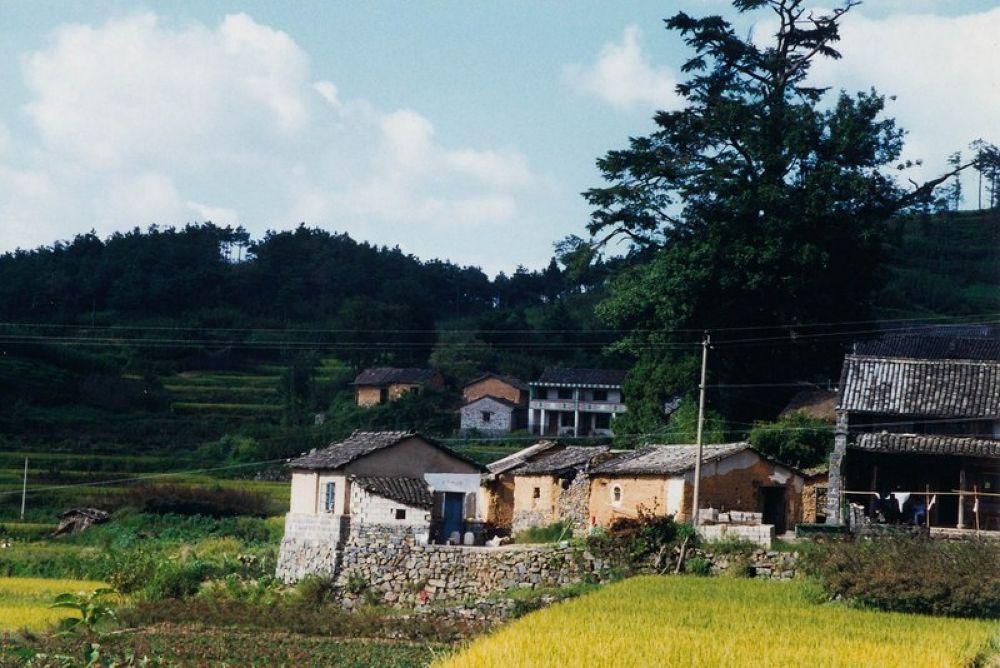 Photo in Random #zhejiang - fenghua and tengtou