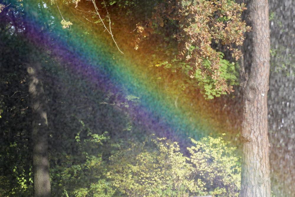 Photo in Random #rainbow