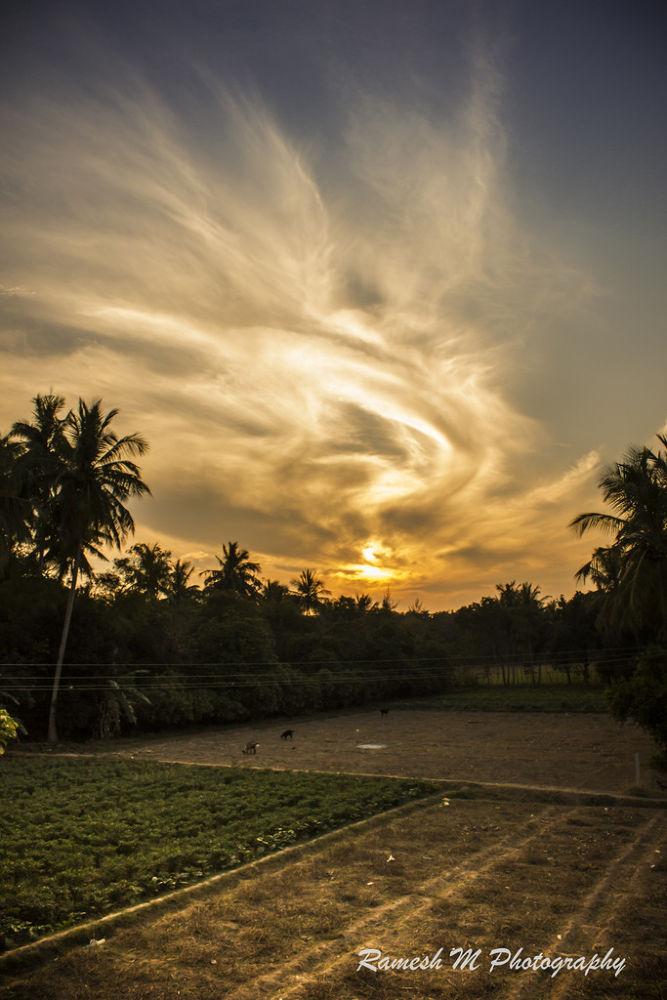 Photo in Landscape #sunrise #nature #landscape #sunset #tamil nadu #indian photography #pudukkottai #indian landscape photography