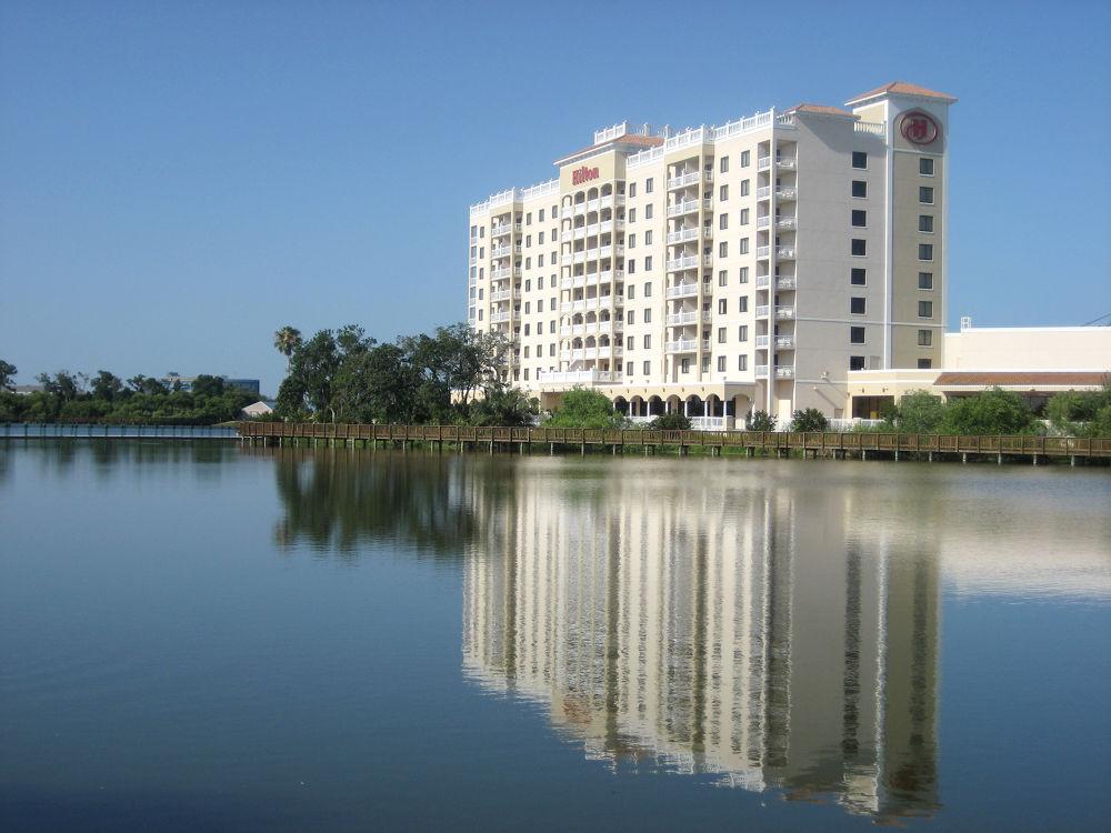 Photo in Random #florida #hilton hotel #st. petersberg