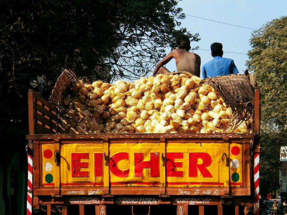 Photo in Random #street #india #men #truck #chennai #madras #coconuts #laborers #coconut