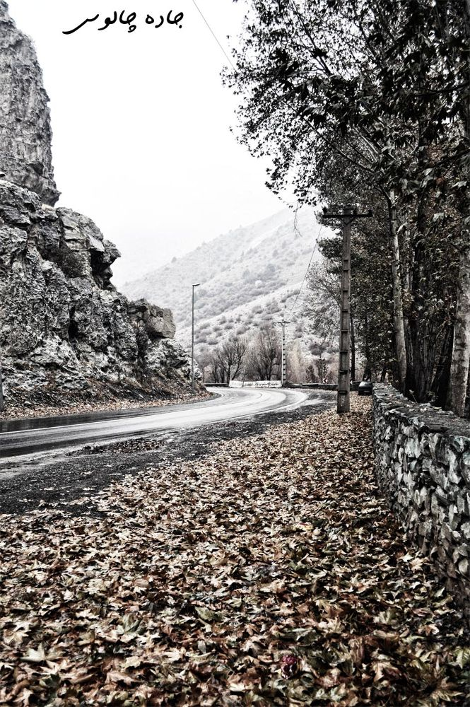 Photo in Landscape #جاده چالوس #iran #chaloos #2011