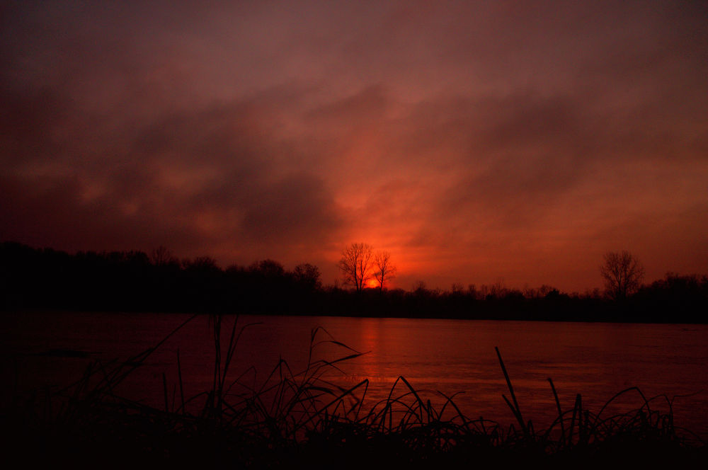 Photo in Landscape #victoria #winter #clouds #snow #lake #sunset #ice #minnesota #haaland #reeds #carver park reserve