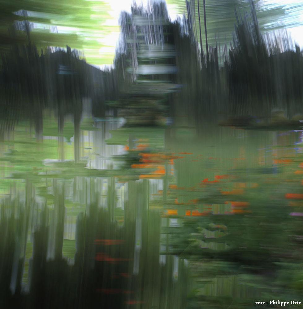 Photo in Random #stylus phantasticus