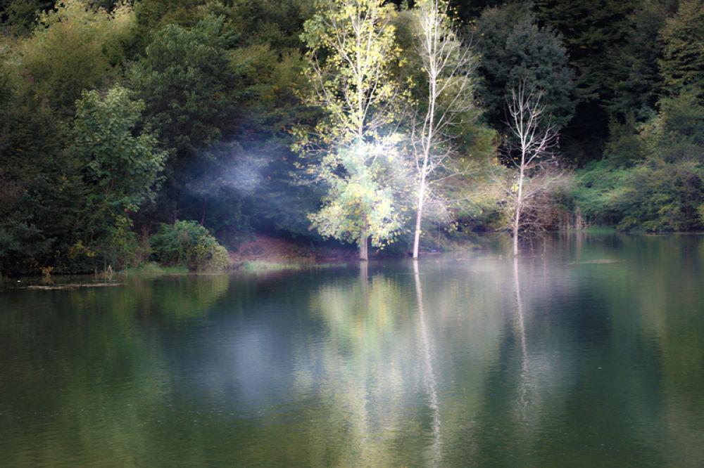 Photo in Landscape #nature #landscape