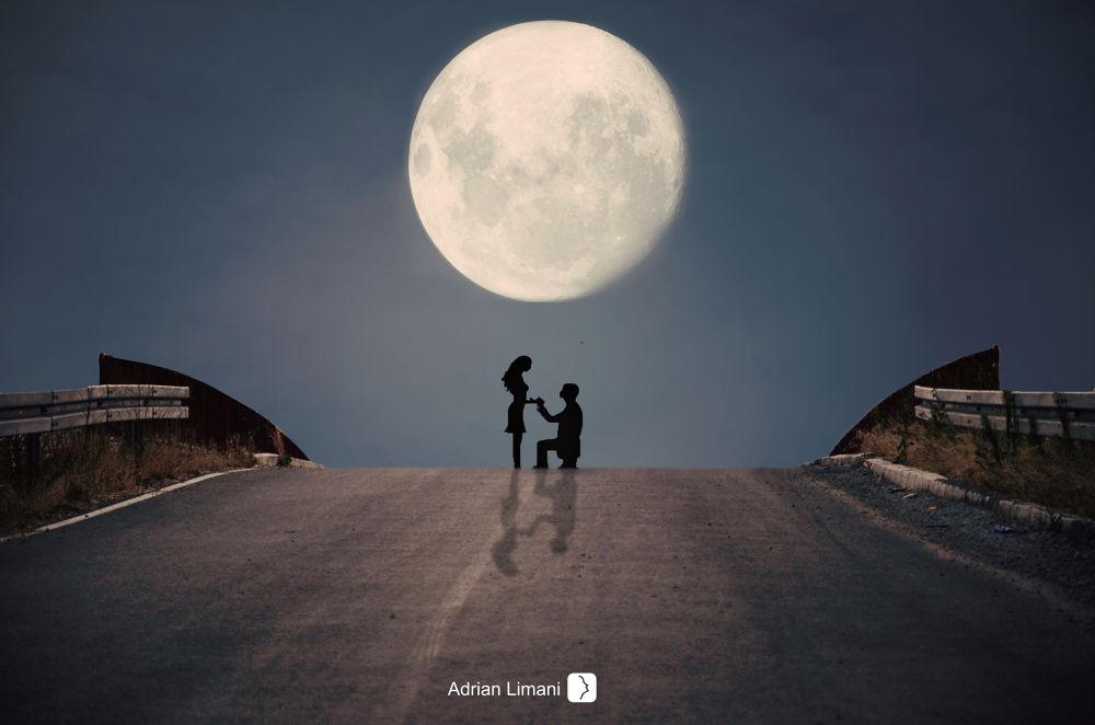 Photo in Fine Art #love #moon #bridge #night #couple #silhouette #proposal