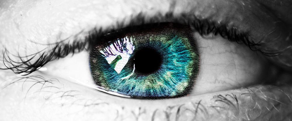 Photo in Macro #white #blue #black #green #eye #macro #close up #lash